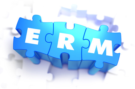 ERM - White Word on Blue Puzzles on White Background. 3D Illustration.