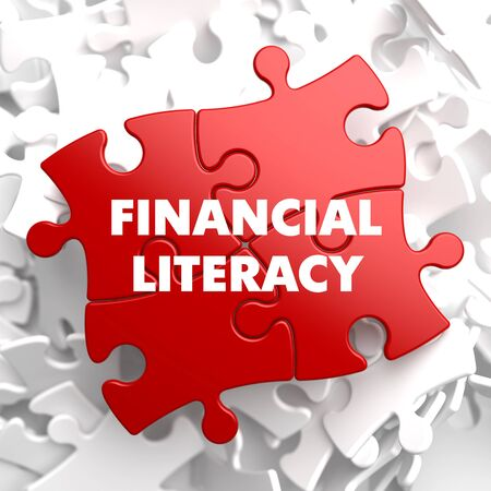 literacy: Financial Literacy on Red Puzzle on White Background. Stock Photo