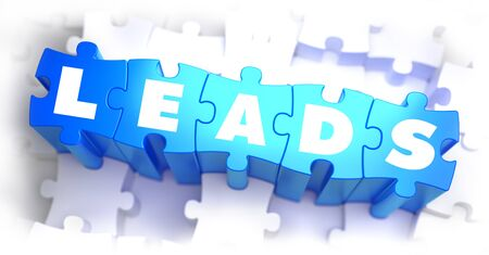 selective: Leads - White Word on Blue Puzzles on White Background and Selective Focus. 3D Render. Stock Photo