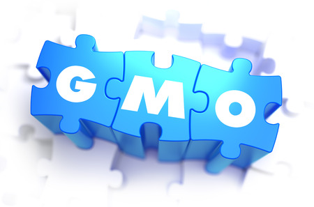 genetically modified crops: GMO - Genetically Modified Organism - White Abbreviation on Blue Puzzles on White Background. 3D Illustration. Stock Photo
