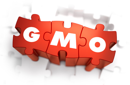 genetically modified crops: GMO - Text on Red Puzzles with White Background. 3D Render.