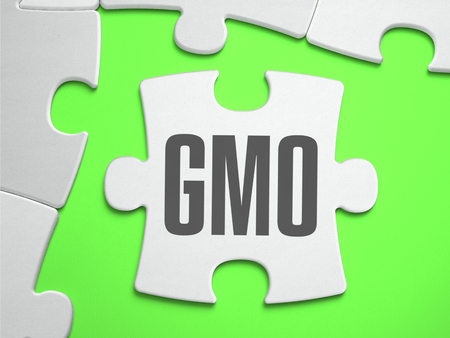 genetically modified crops: GMO - Genetically Modified Organism - Jigsaw Puzzle with Missing Pieces. Bright Green Background. Close-up. 3d Illustration. Stock Photo