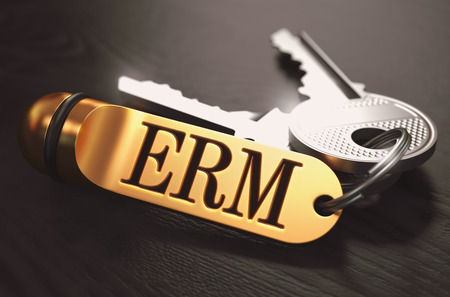 competitiveness: ERM - Enterprise Risk Management - Bunch of Keys with Text on Golden Keychain. Black Wooden Background. Closeup View with Selective Focus. 3D Illustration. Toned Image.