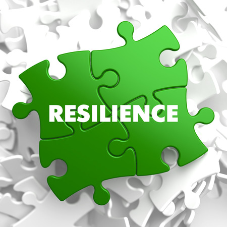 resilience: Resilience on Green Puzzle on White Background.