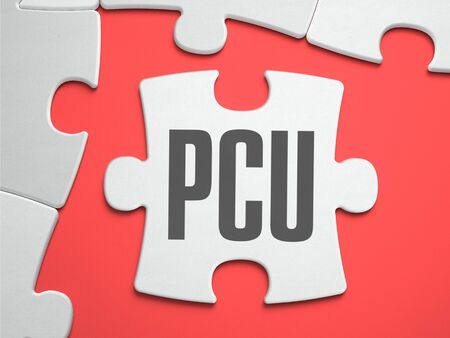 concurrent: PCU - Peak Concurrent User - Text on Puzzle on the Place of Missing Pieces. Scarlett Background. Close-up. 3d Illustration.