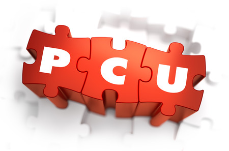 concurrent: PCU - Peak Concurrent User - Text on Red Puzzles with White Background. 3D Render.