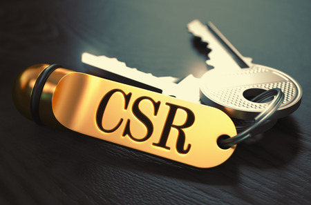 cypher: CSR - Certificate Signing Request - Bunch of Keys with Text on Golden Keychain. Black Wooden Background. Closeup View with Selective Focus. 3D Illustration. Toned Image.