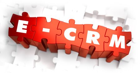 customer focus: Word - E-CRM - E- Customer Relationship Management - on Red Puzzle on White Background. Selective Focus.