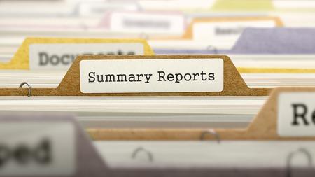 registros contables: Carpeta en el cat�logo de color Marcado como Informes de resumen del primer Vista. Enfoque selectivo.
