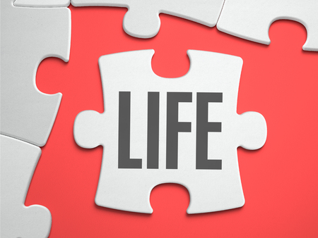 lifespan: Life - Text on Puzzle on the Place of Missing Pieces. Scarlett Background. Close-up. 3d Illustration. Stock Photo