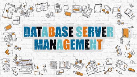 centralized: Database Server Management. Database Server Management Drawn on White Wall. Modern Style Illustration. Doodle Design Style of Database Server Management. Line Style Illustration. White Brick Wall. Stock Photo
