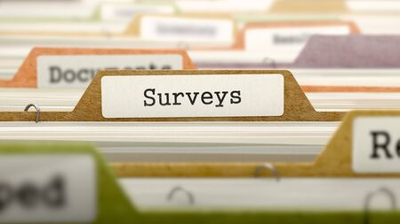 derivation: Surveys on Business Folder in Multicolor Card Index. Closeup View. Blurred Image. 3D Render. Stock Photo