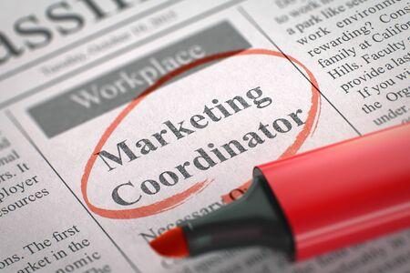 Giornale con Pubblicità annuncio di assunzione Marketing Coordinator. Immagine sfocata con messa a fuoco selettiva. Concetto di reclutamento. 3D.