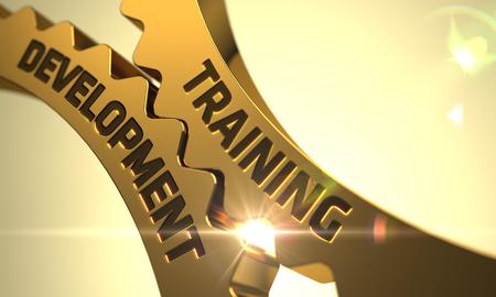 apprenticeships: Training Development on the Golden Metallic Cog Gears. 3D Render.