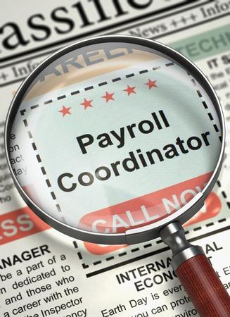 Payroll Coordinator. Newspaper With The Job Vacancy. Newspaper ...