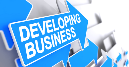 leadership potential: Developing Business - Label on Blue Arrow. 3D. Stock Photo