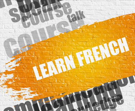 Education Service Concept: Learn French - on White Wall with Word Cloud Around. Modern Illustration. Learn French on White Brickwall Background with Word Cloud Around It.