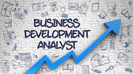Business Development Analyst auf White Brick Wall gezeichnet.