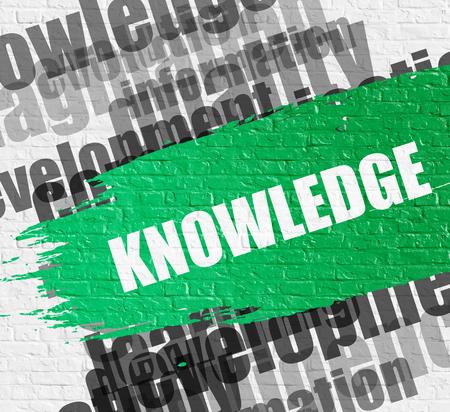 Education Service Concept: Knowledge - on White Brick Wall with Wordcloud Around. Modern Illustration. Knowledge Modern Style Illustration on the Green Brushstroke. Lizenzfreie Bilder