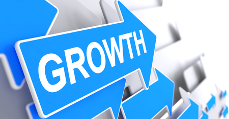 Growth - Text on the Blue Pointer. 3D.