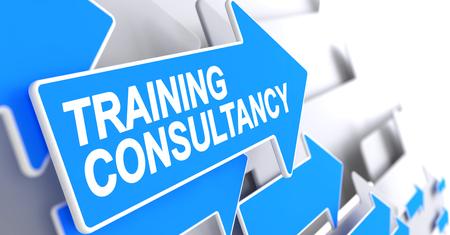 Training Consultancy - Label on Blue Pointer. 3D. Standard-Bild