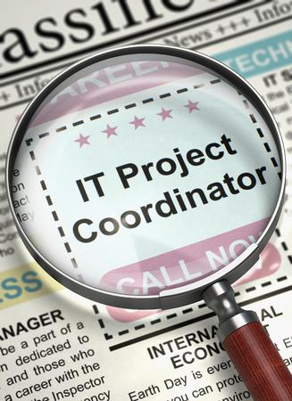 IT Project Coordinator Job Vacancy. 3D.