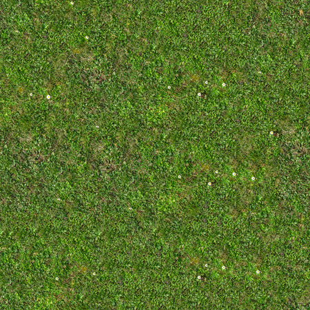 Green Grass. Seamless Tileable Texture. Imagens