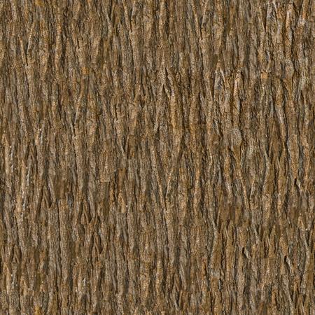 Écorce en bois. Texture Tileable sans couture. Banque d'images