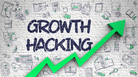 Growth Hacking Drawn on White Brick Wall.