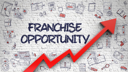 Franchise Opportunity Drawn on Brick Wall. 3d.