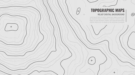 Stylized Height of Topographic Contour in Lines. Concept of a Conditional Geography Scheme and Terrain Path. Vector illustration. Abstract Vector illustration in Grey Colors.