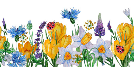 Hand painted watercolor template of spring flowers. Blue cornflower, crocus, ladybug and leaves isolated on a white background. Perfect for design, banners, card, textile 版權商用圖片