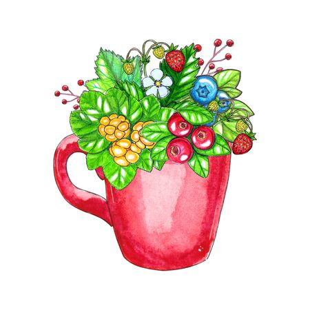 Hand painted watercolor illustration with berries and leaves in red cup isolated on white background. Perfect for design, invitations, cards, logo and other projects Zdjęcie Seryjne