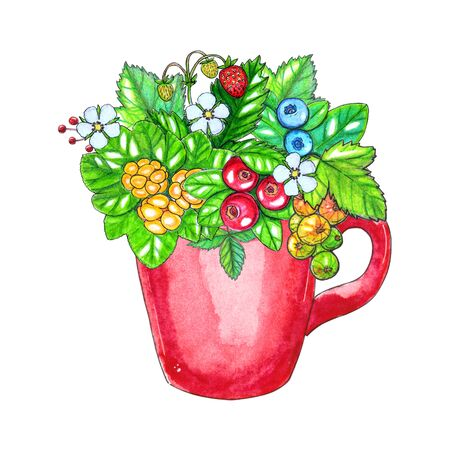 Hand painted watercolor illustration with berries and leaves in red cup isolated on white background. Banco de Imagens