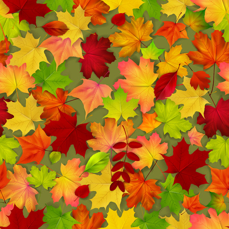 autumn background: Seamless with red and yellow autumn leaves, vector illustration