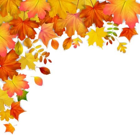 Colorful autumn maple leaves frame, vector illustration  イラスト・ベクター素材