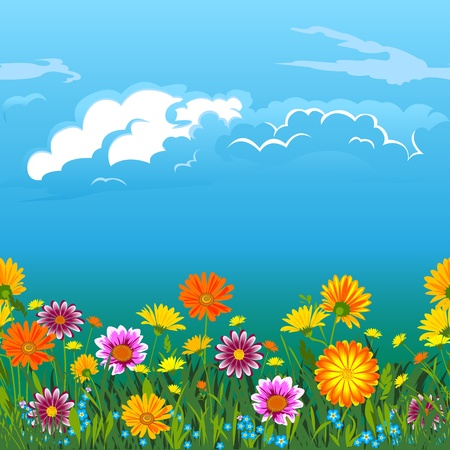 blue daisy: Flowers, green  grass, sky  and  clouds. Seamless horizontally.