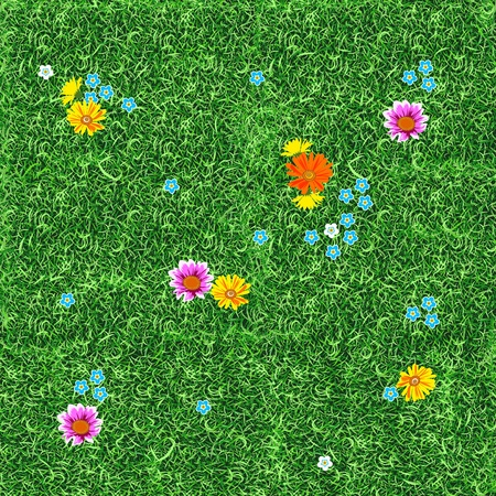 Flowers on the lawn.  Seamless. Illustration