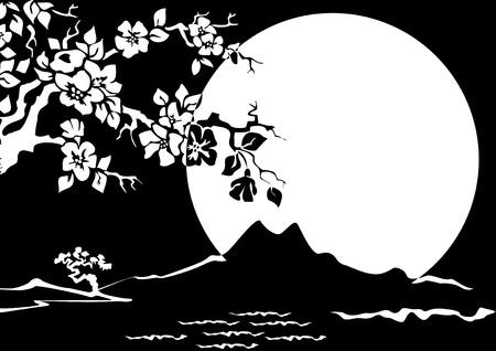 Noční krajina. Sakura na pozadí úplňku. Černá a bílá ilustrační.