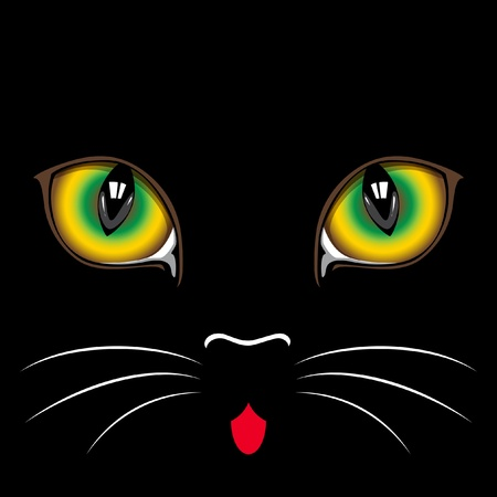 Muzzle black  cat  close up.  Eyes. Vector