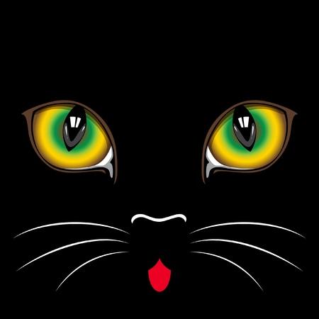 Tlama černá kočka zblízka. Oči.