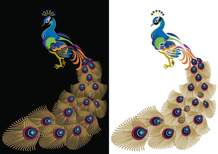 exoticism: Peacock with tail dissolved in the black and white. Illustration