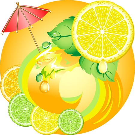 Citrus ecology concept. Fresh fruits and juices. Lemon, orange and lime. Stock Vector - 12464934
