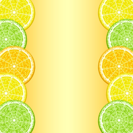The frame of the lobes of lemon, orange and lime. The background. Vector