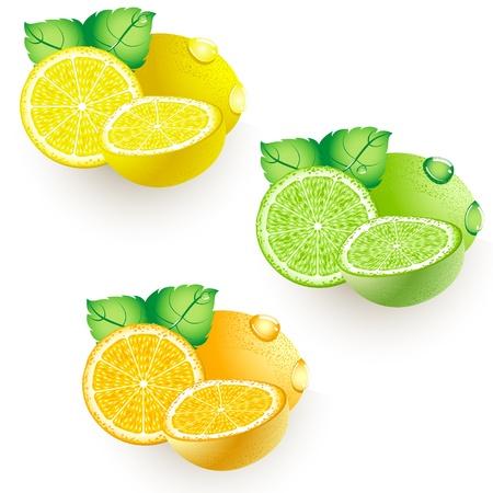 lemon lime: Ripe agrumi - limoni, lime e arancio. Chiodi di garofano e foglie verdi con gocce.