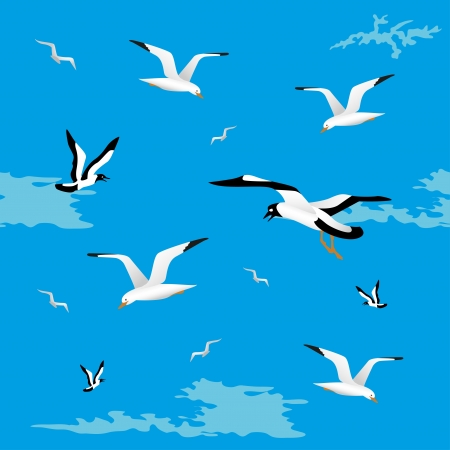 Background gull on a blue background  Seamless