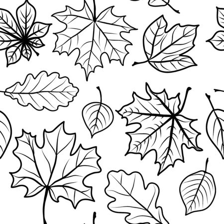 Foliage of different breeds set  Seamless black and white  Vector