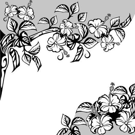 Beautiful frame with branches and flowers of hibiscus  Black-and-white drawing  Vector