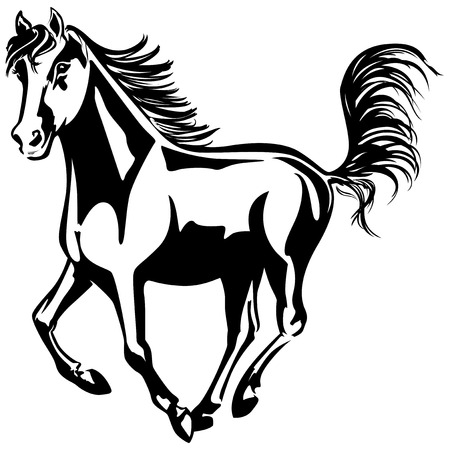 The horse is running  Black-and-white drawing  Silhouette Stock Vector - 22867444