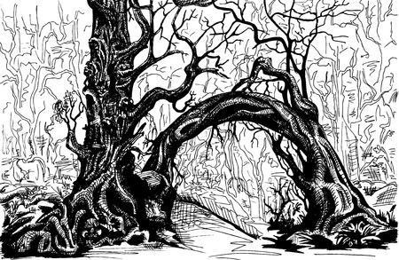 thicket: Thicket. Felled trees. Drawing black and white.